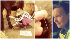 Akupunktiota ja silkkihoitoja